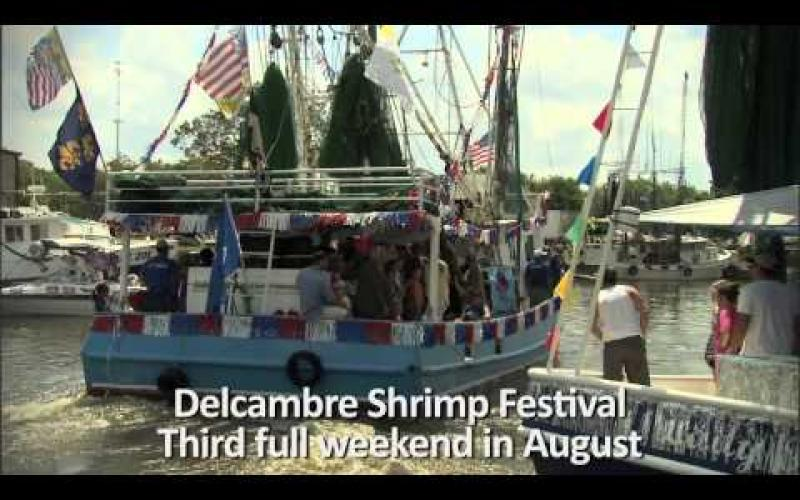Embedded thumbnail for Vermilion Parish Festivals